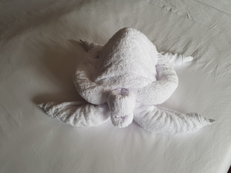 The towel turtle